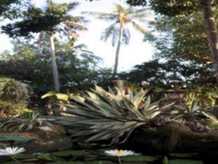 Rambutan Lovina Hotel बाली - बगीचा