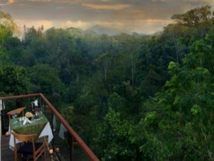 Komaneka at Tanggayuda Ubud Bali - View