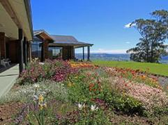 Saddle Hill Lodge | New Zealand Budget Hotels