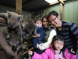 /fauna-australia-wildlife-retreat/hotel/great-ocean-road-lavers-hill-au.html?asq=jGXBHFvRg5Z51Emf%2fbXG4w%3d%3d
