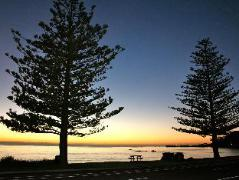 Seaview Motel | New Zealand Budget Hotels