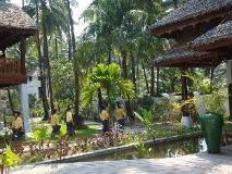 Yoma Cherry Lodge: garden