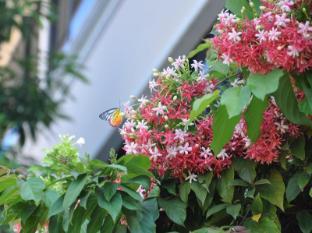 Imperial Garden Villa & Hotel Phnom Penh - Garden
