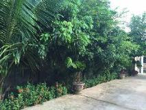 Khounthavixab Guesthouse: exterior