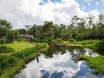 Vat Phou Mekong Cruise: nearby attraction