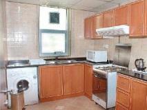 Pan Gulf Hotel Suites: kitchen