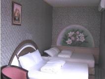 Starsand Bed and Breakfast: guest room