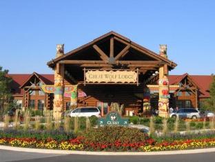 /great-wolf-lodge/hotel/niagara-falls-on-ca.html?asq=jGXBHFvRg5Z51Emf%2fbXG4w%3d%3d