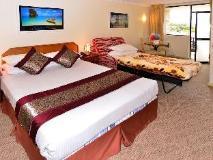Metro Inn Ryde: guest room