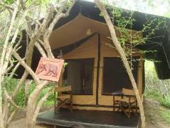 Leopards Club Yala | Sri Lanka Budget Hotels