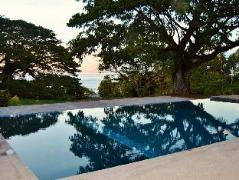 Taveuni Dive Resort | Taveuni Fiji Hotels Cheap Rates