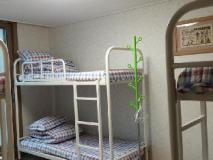 Dana Guesthouse: guest room