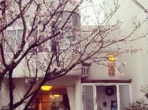 Sanzhi Little White House: villa