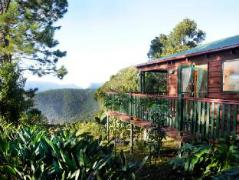Australia Hotel Booking | Clouds On Beechmont Cottages