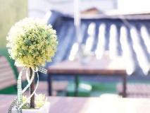 Mini Hotel DALKOM Dongdaemun: balcony/terrace