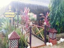 Nay Min Thar Hotel: garden