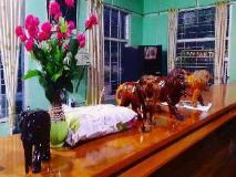 Zay Yar Thein Gi Hotel: reception
