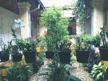 Rougphar Guesthouse: garden