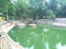 Puna Phaxok Resort: surroundings