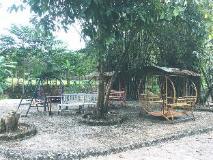Puna Phaxok Resort: garden