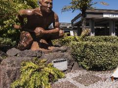 Copthorne Hotel Rotorua   New Zealand Hotels Deals