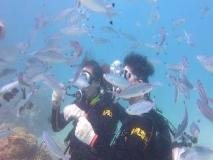 Kenting Atoll Dive Center Hostel: sports and activities