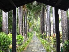 Chitwan Paradise Hotel   Nepal Budget Hotels