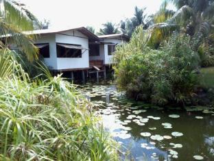 /nature-song-island-guest-house/hotel/huahine-island-pf.html?asq=vrkGgIUsL%2bbahMd1T3QaFc8vtOD6pz9C2Mlrix6aGww%3d