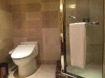 Kingdom Hotel: bathroom