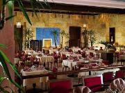 Brasserie Oasis