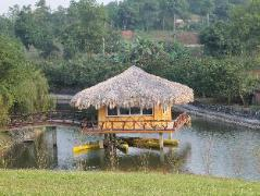 Lai Farm Ba Vi Hotel | Cheap Hotels in Vietnam