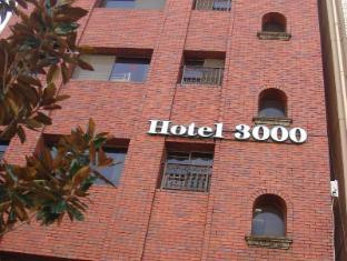 아키하바라 호텔 3000