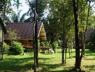 /khao-sok-jungle-resort/hotel/khao-sok-suratthani-th.html?asq=jGXBHFvRg5Z51Emf%2fbXG4w%3d%3d