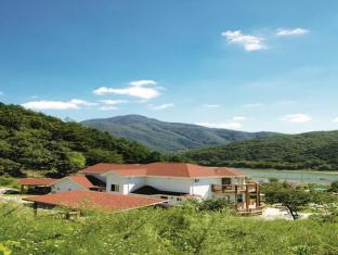 /happy-forest-pension/hotel/hongcheon-gun-kr.html?asq=jGXBHFvRg5Z51Emf%2fbXG4w%3d%3d