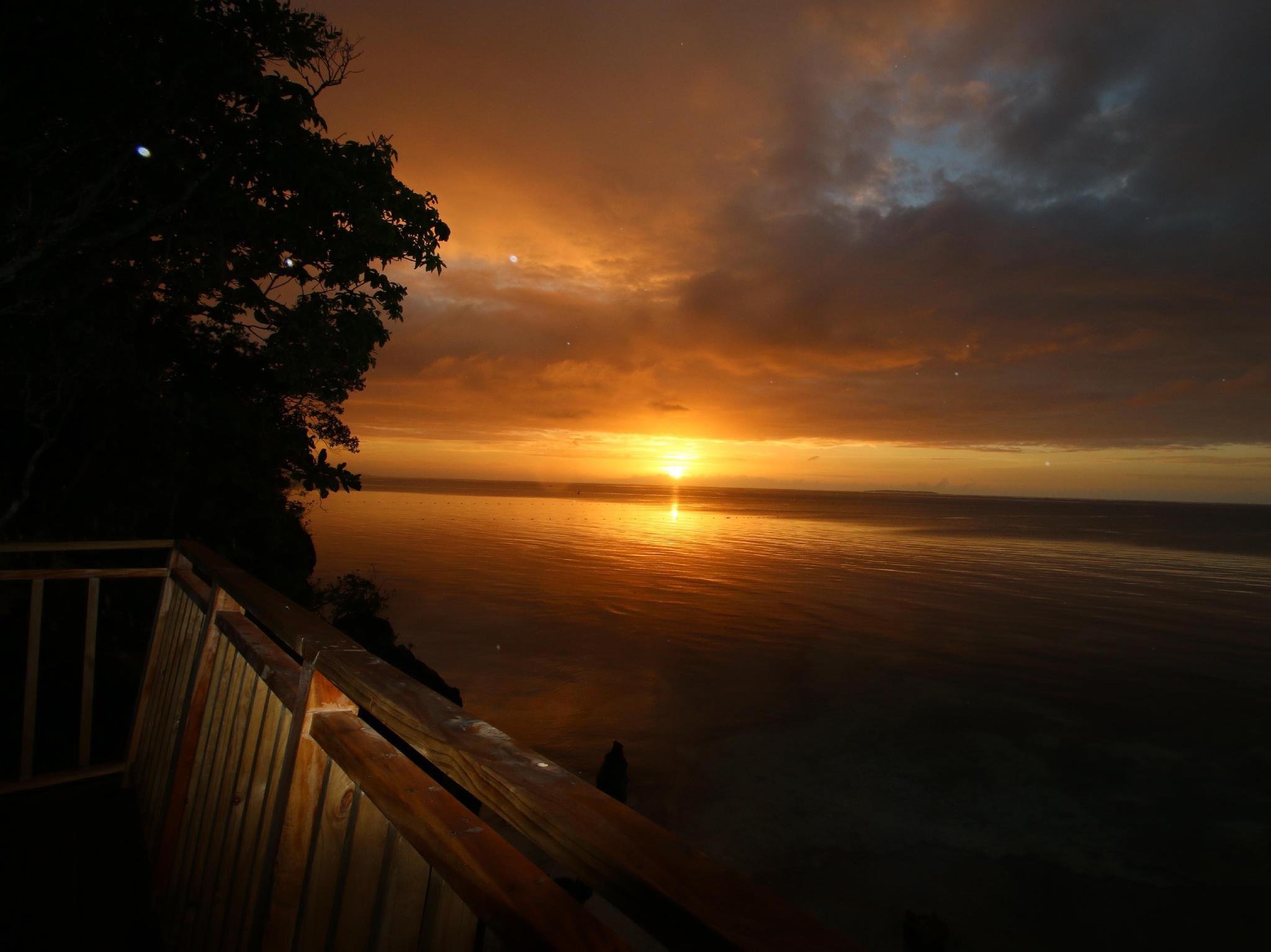 Bohol Shores83