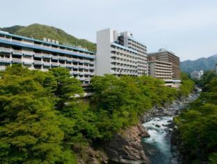 /ja-jp/kinugawa-onsen-hotel/hotel/nikko-jp.html?asq=jGXBHFvRg5Z51Emf%2fbXG4w%3d%3d