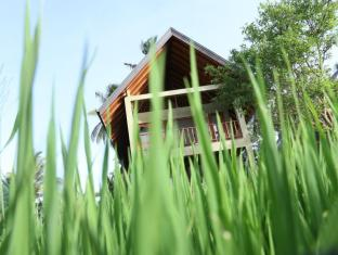 /thidas-arana-hotel/hotel/polonnaruwa-lk.html?asq=jGXBHFvRg5Z51Emf%2fbXG4w%3d%3d