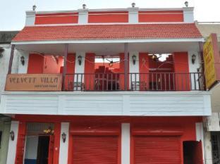 Velvett Villa - Heritage Home