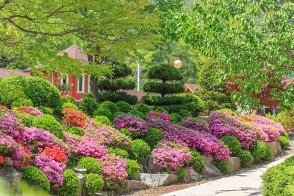 Yeongwol Beautiful scenery Pension Yeongwol-gun