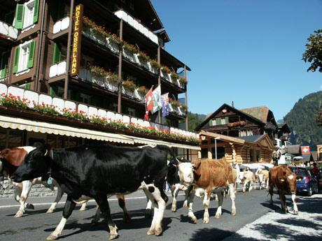 Hotel Oberland, Interlaken