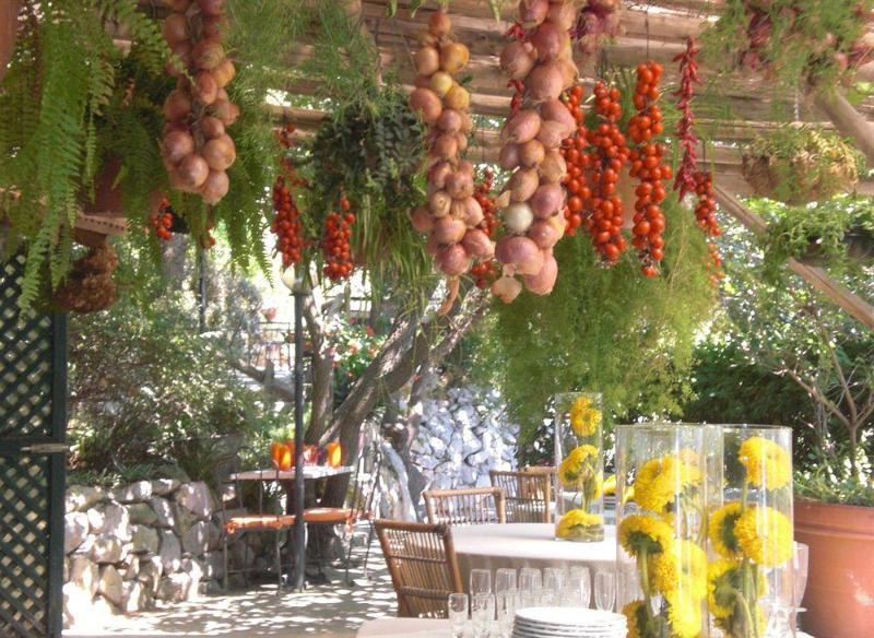 Azienda Agricola Fattoria Terranov