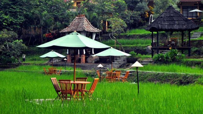 Padi City Resort, Malang