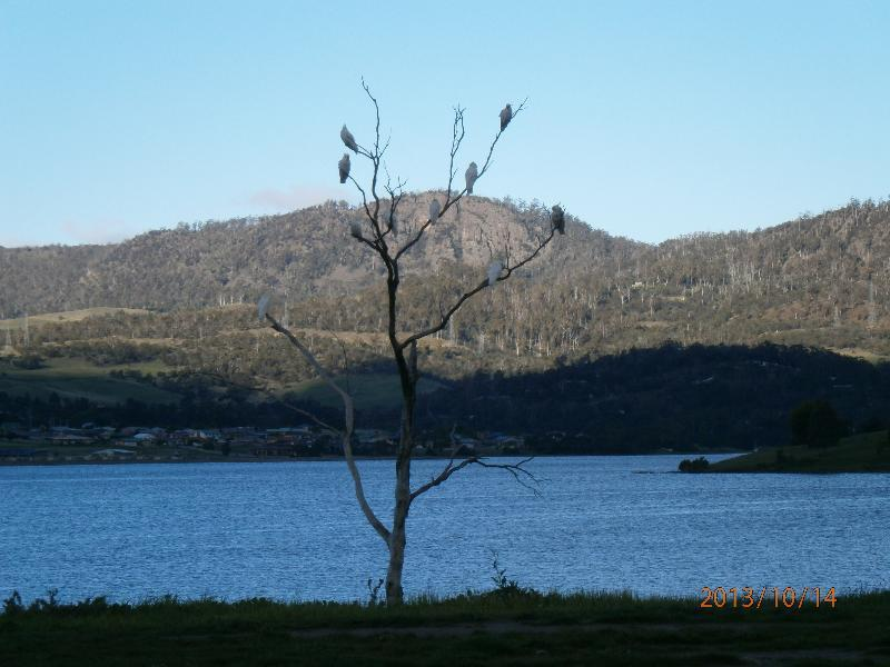 Derwent Retreat, Glenorchy