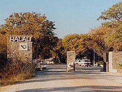 Halali Resort (t), Omuthiyagwipundi